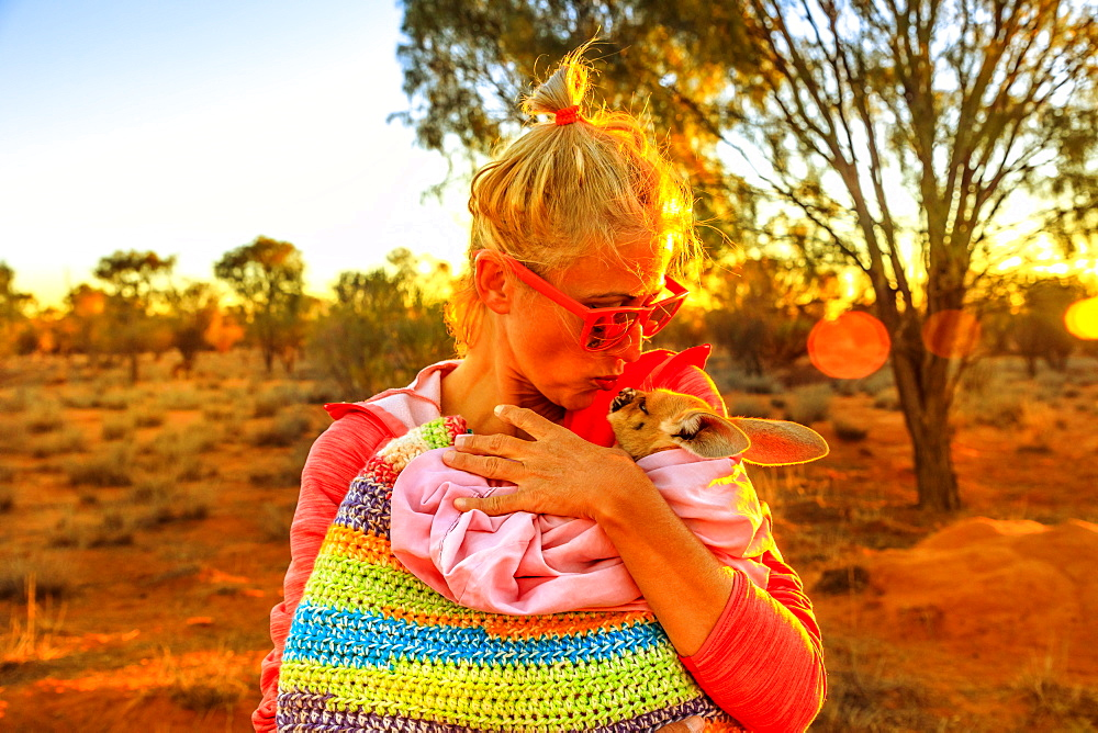 Tourist woman holding and kissing kangaroo joey at sunset light in Australian Outback, Red Center, Northern Territory, Australia, Pacific