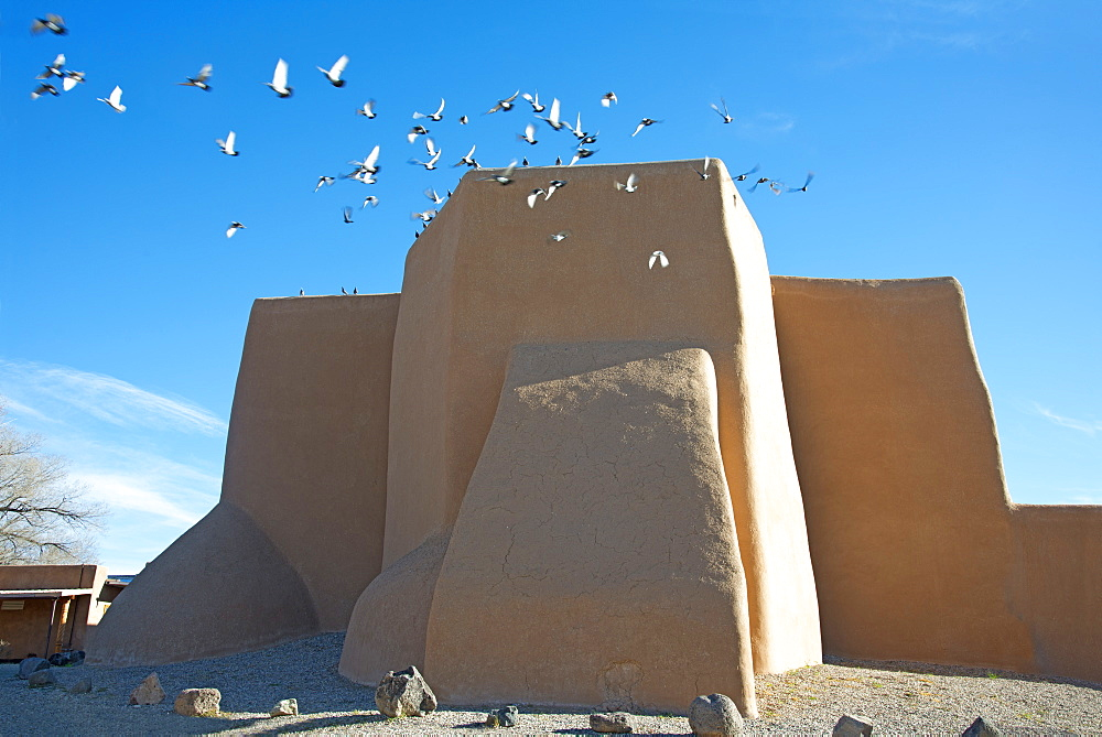 Flock of pigeons flying from the historic adobe San Francisco de Asis church in Taos, New Mexico