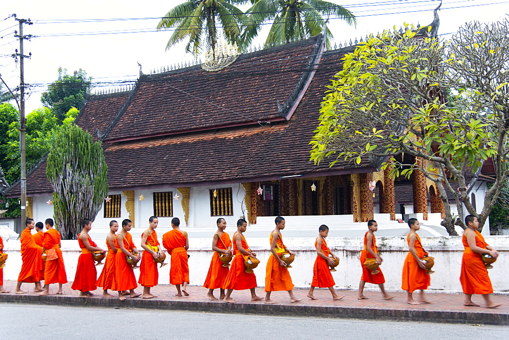 Buddhist monks receive rice from locals during an early morning daily ritual known as Sai Bat (morning alms) in Luang Prabang. - 1315-334