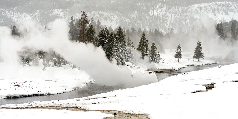 Hot Springs emptying on the Firehole River, Wyoming, United States of America, North America