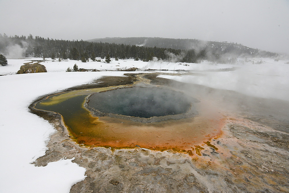 Hot Springs, Lower Geyser Basin, Yellowstone National Park, Wyoming, United States of America, North America