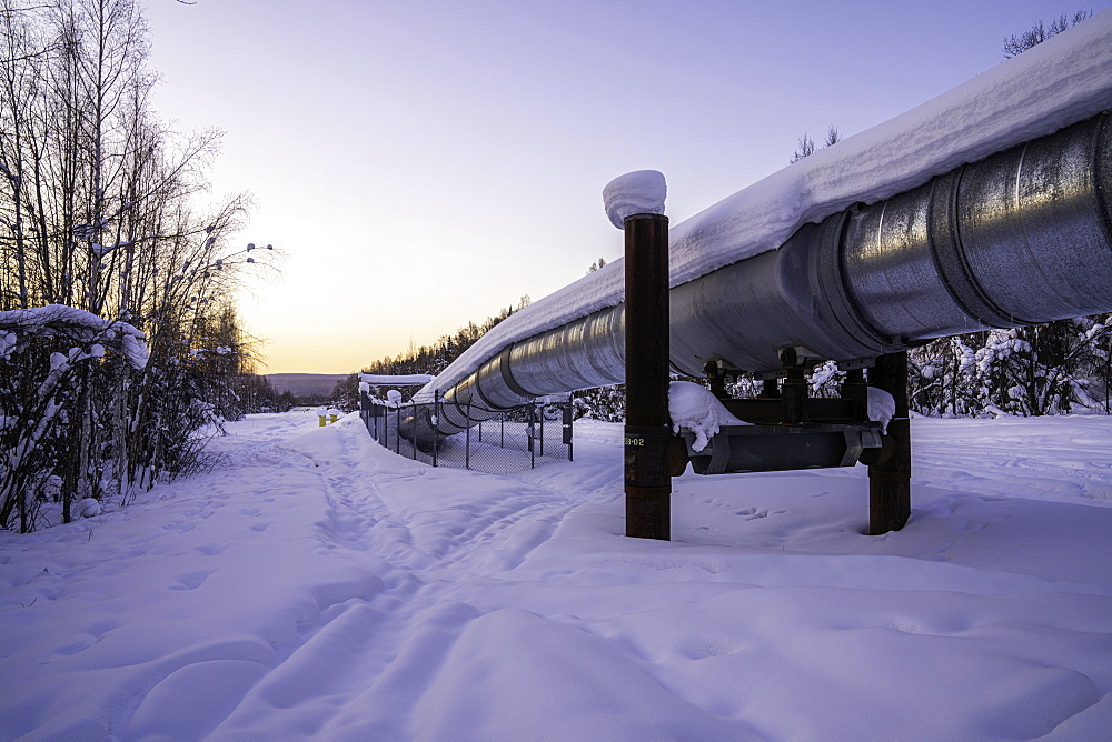 Trans-Alaska Pipeline System, Fairbanks, Alaska, United States of America, North America - 1320-103