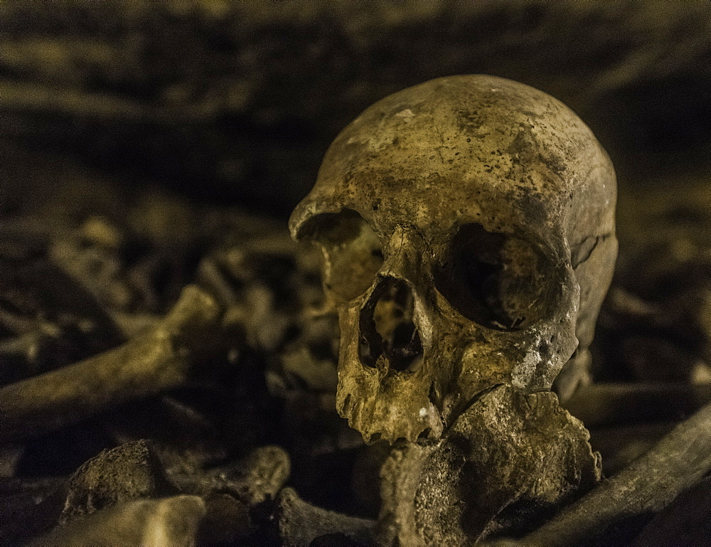Skulls and bones that line the halls of the Catacombs in Paris, France. - 1320-15