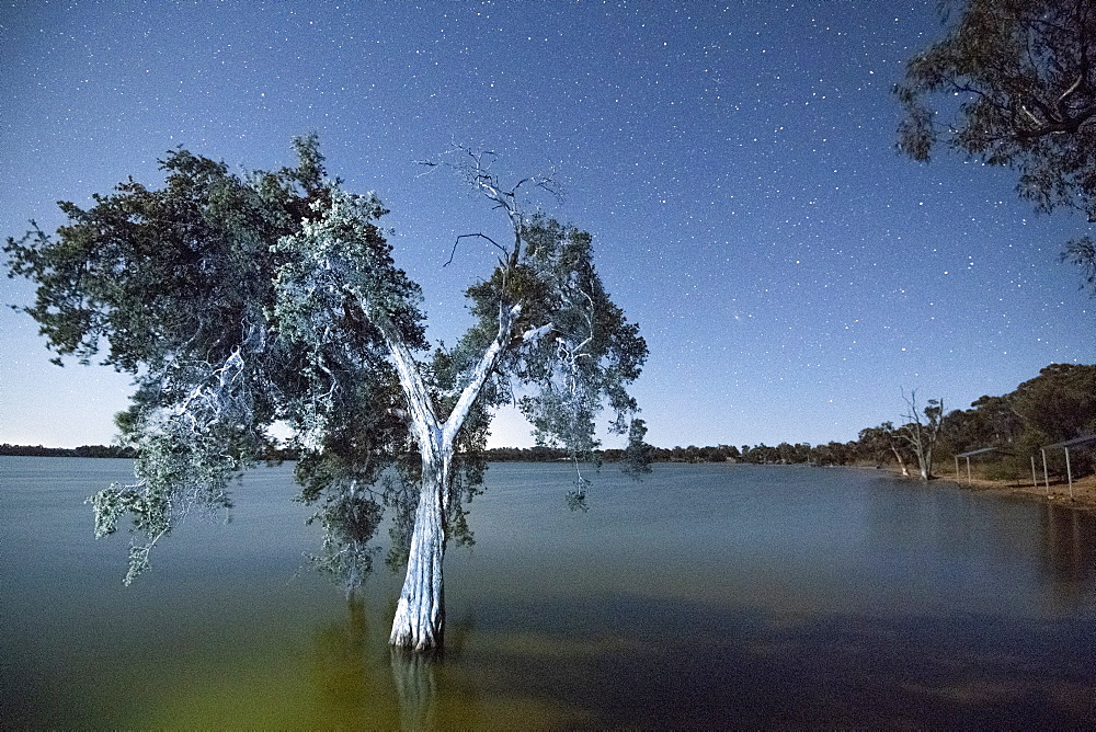 Lake Towerrinning, near Darkan, Western Australia, Australia, Pacific