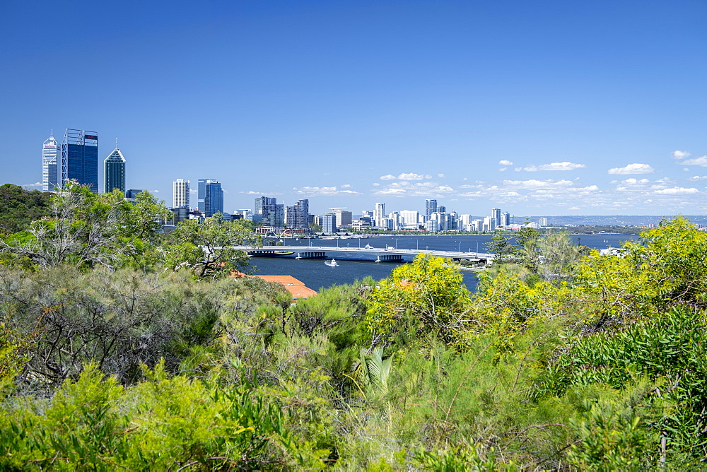 View of the City of Perth from Kings Park, Perth, Western Australia, Australia, Pacific