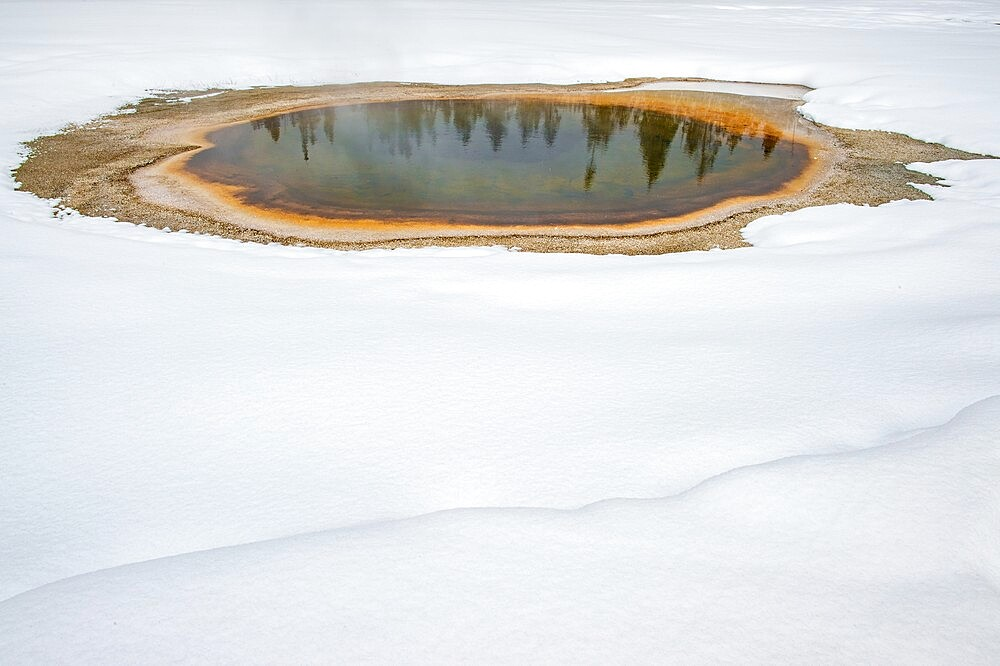 Trees reflected in thermal feature in the snow, Yellowstone National Park, Wyoming, United States - 1335-128