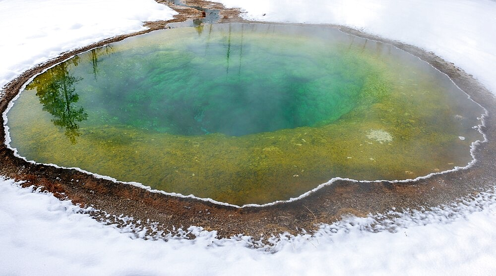 Morning Glory pool hot spring in the snow, Yellowstone National Park, Wyoming, United States - 1335-130