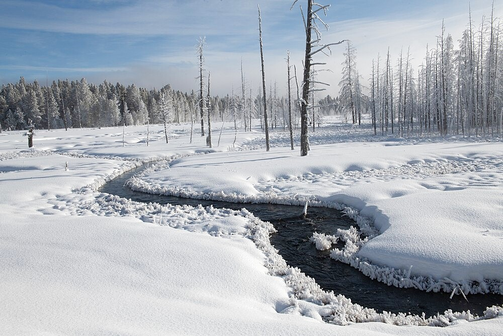 Snowscape with stream and trees, Yellowstone National Park, Wyoming, United States - 1335-140