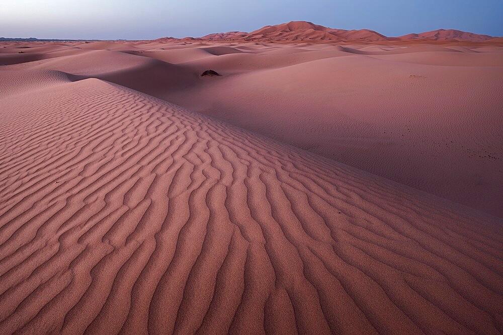 Blue hour on the Sahara desert sand dunes pattern, Erg Chebbi, Merzouga, Morocco - 1336-181