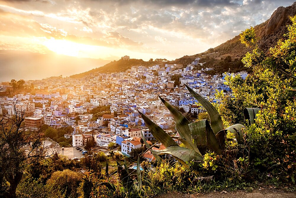 Sunset over Chefchaouen, the blue city of Morocco - 1336-187
