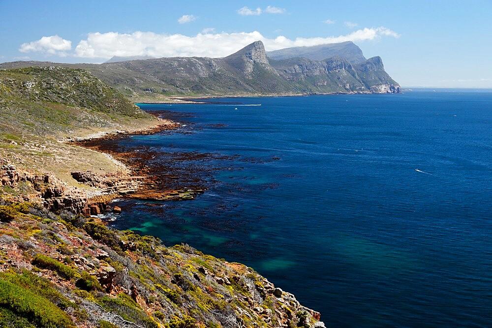 Cape Point Nature Reserve - False Bay - 1338-16
