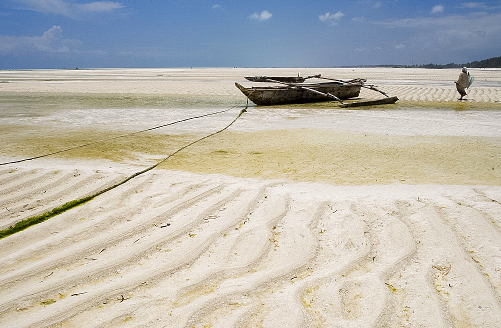 Traditional wooden dhows on Paje Beach at low tide, Paje, Zanzibar, Tanzania, East Africa, Africa