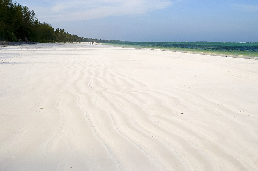 Fine white sand and palm trees on Matemwe Beach, Zanzibar, Tanzania, East Africa, Africa