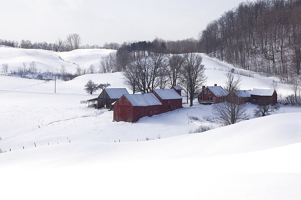 A traditional farm surrounded by snow covered fields in South Woodstock, Vermont, New England, United States of America, North America