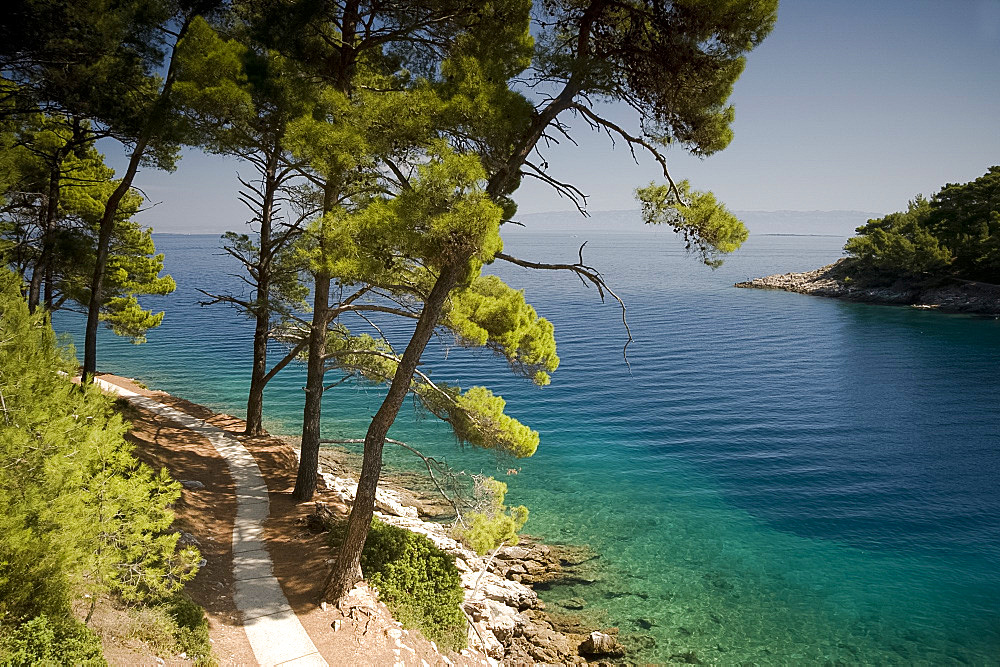 A small bay surrounded by pine trees near Veli Losinj on the island of Losinj, Kvarner region, Croatia, Europe