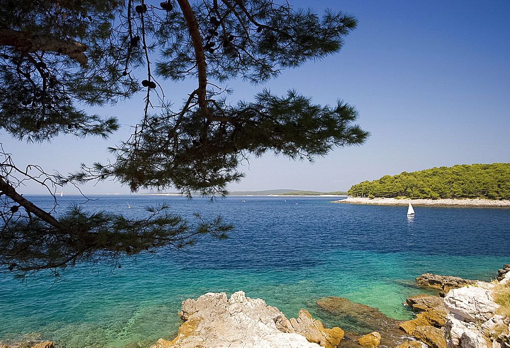 A view of the sea near Mali Losinj on the island of Losinj, Kvarner region, Croatia, Europe