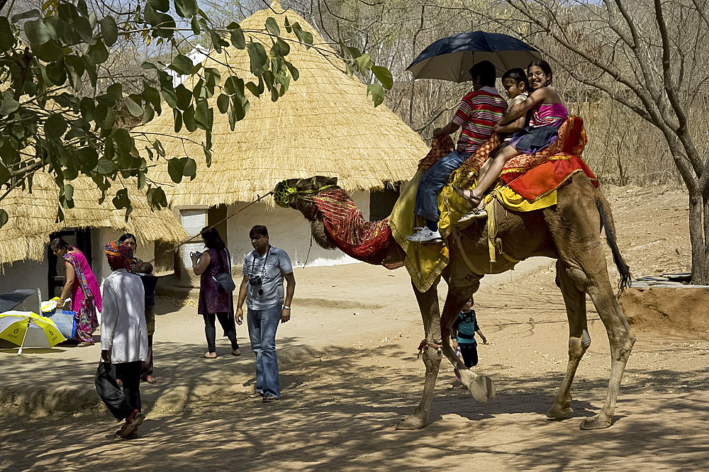 Tourists on a camel at the Shipgram Craftsmen's Village, Udaipur, Rajasthan, India, Asia