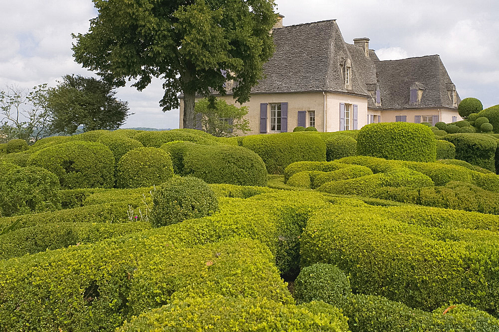 Elaborate topiary surrounding the chateau at Les Jardins de Marqueyssac in Vezac, Dordogne, France, Europe