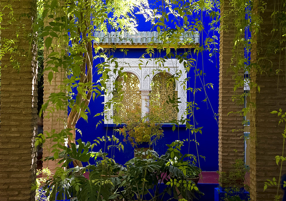 A view through a pergola to ornate windows surrounded by colbalt blue walls at the Majorelle Garden in Marrakech, Morocco, North Africa, Africa