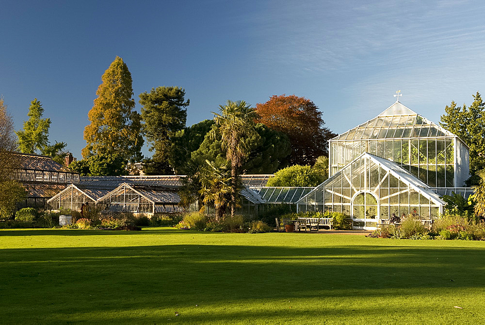 The glasshouses on an autumn day in The Cambridge Botanic Garden, Cambridge, Cambridgeshire, England, United Kingdom, Europe