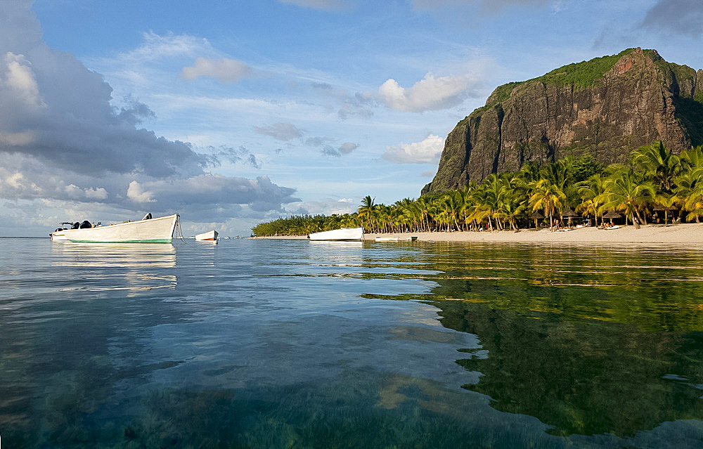 Late afternoon reflections of Le Morne Brabant and palm trees in the sea, Le Morne Brabant Peninsula, south west Mauritius, Indian Ocean, Africa - 149-6605