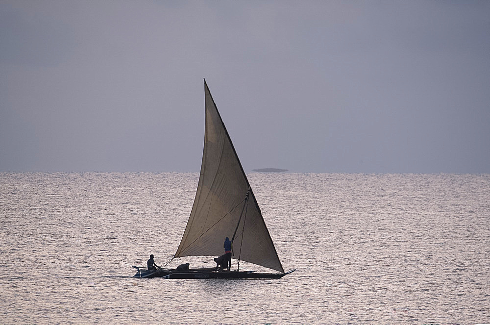 Fisherman heading out to sea at sunrise in a sailing dhow near Ushongo, Pangani, Tanzania, East Africa, Africa