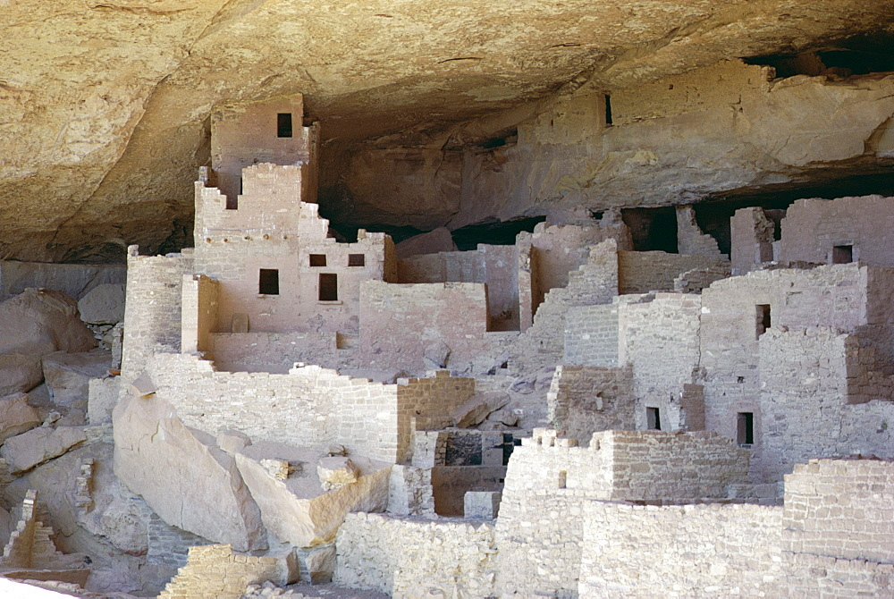 Cliff palace ruins dating from 1200-1300 AD shaded in limestone overhang, Mesa Verde, Mesa Verde National Park, UNESCO World Heritage Site, Colorado, United States of America (U.S.A.), North America
