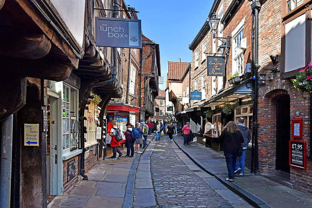 The Shambles, the ancient street of the butchers of York, mentioned in the Doomsday Book of William the Conqueror, York, Yorkshire, England, United Kingdom, Europe - 190-9825