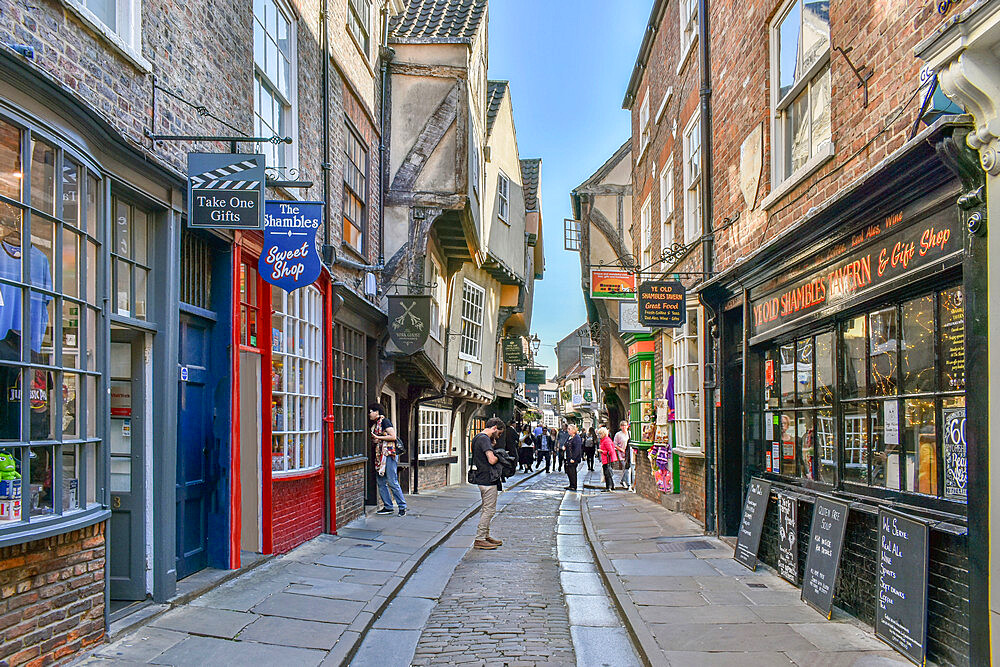 The Shambles, the ancient street of the butchers of York, mentioned in the Doomsday Book of William the Conqueror, York, Yorkshire, England, United Kingdom, Europe - 190-9826