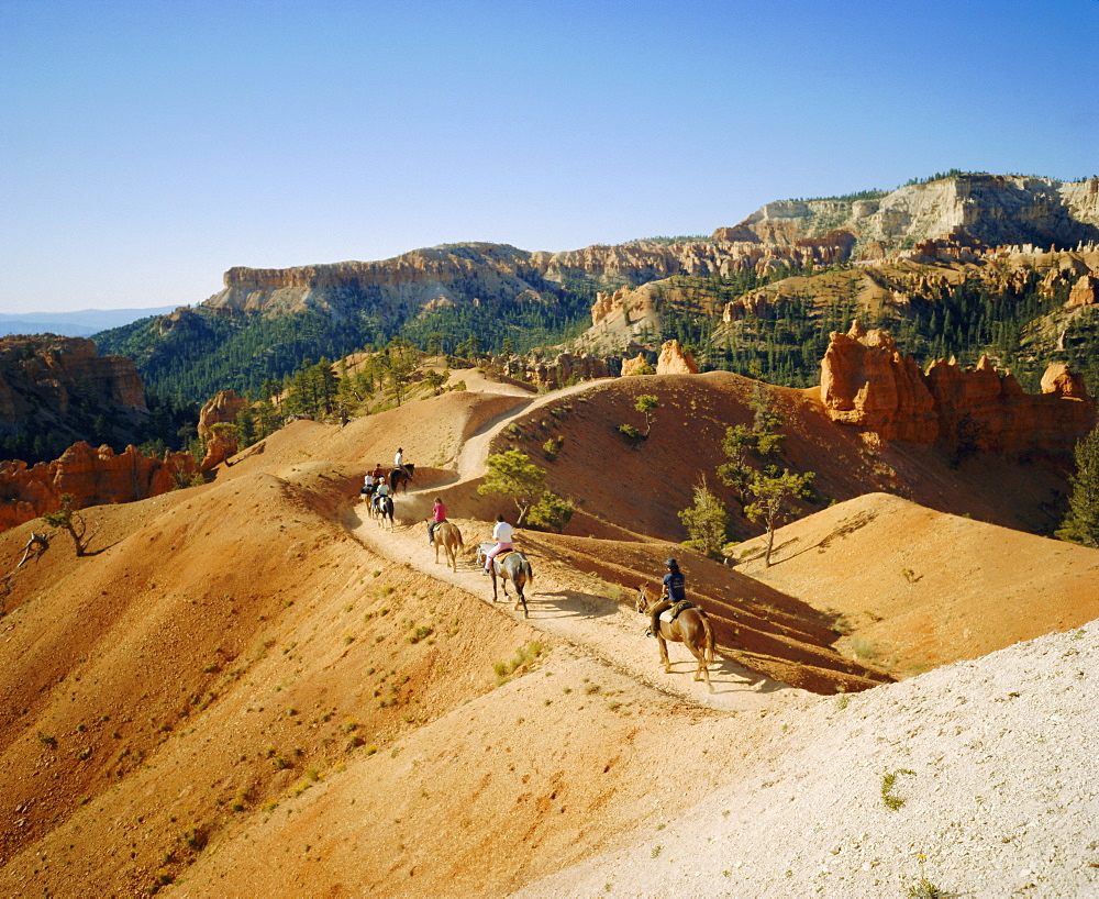 Trail riding, Bryce National Park, Utah, USA - 197-1538
