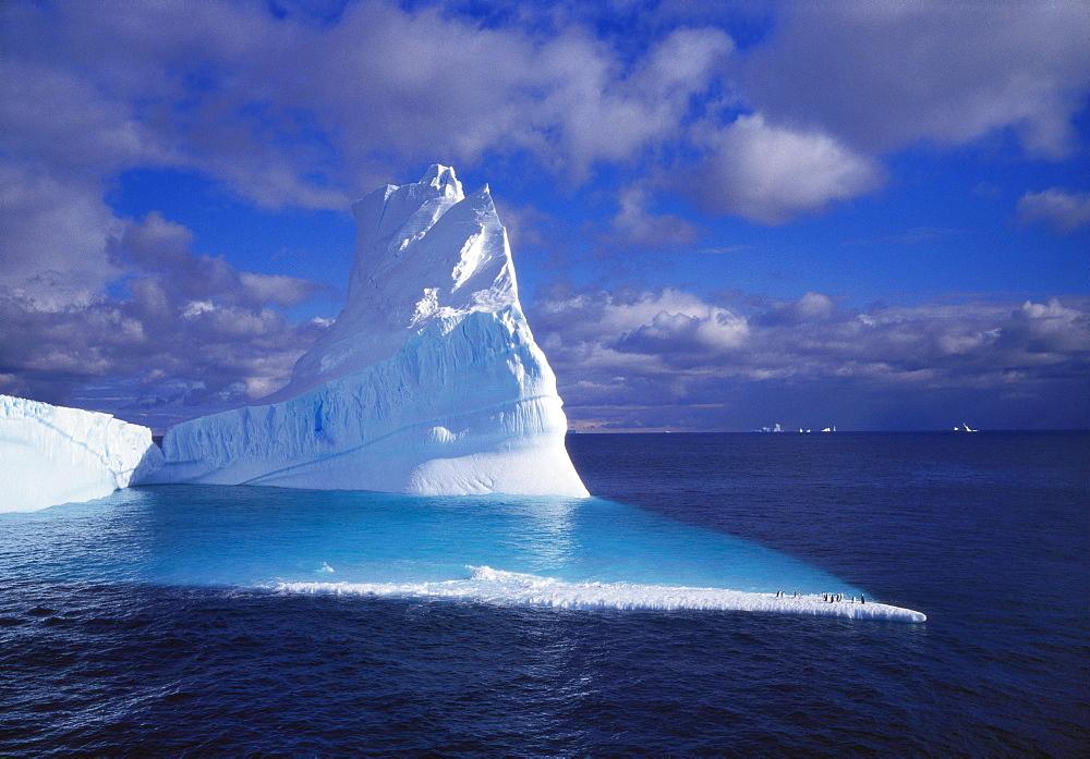 Iceberg, Antartica - 197-4367