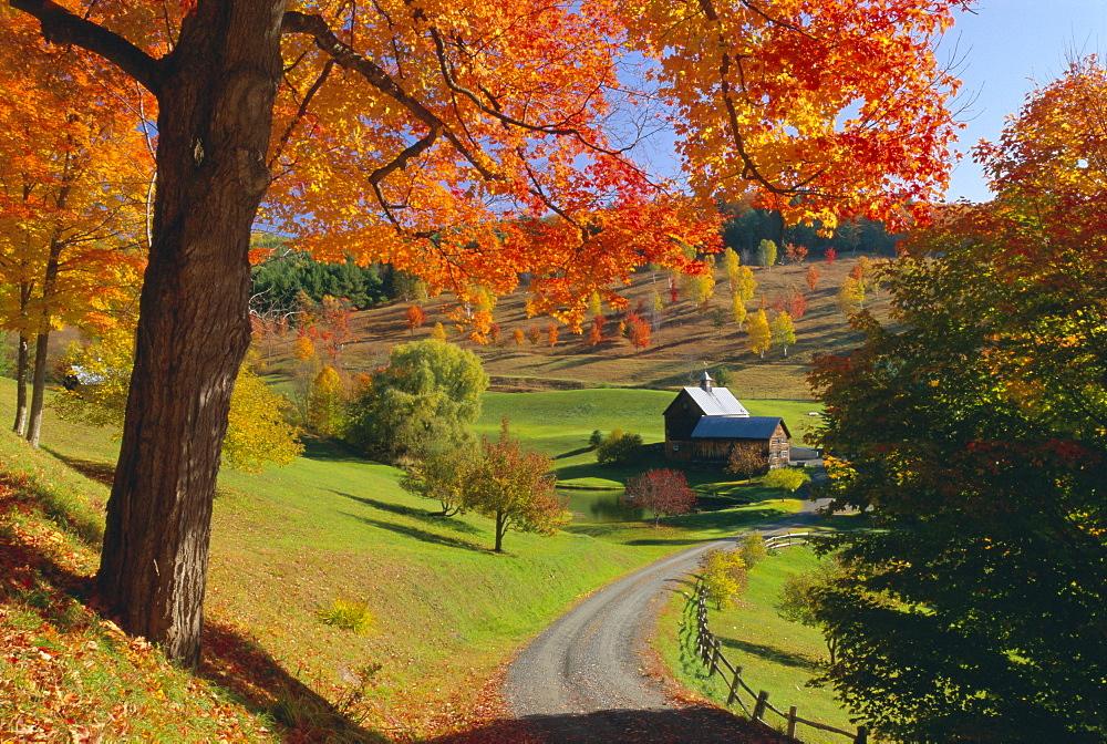 Autumn scene, farm, Vermont, New England, United States of America, North America