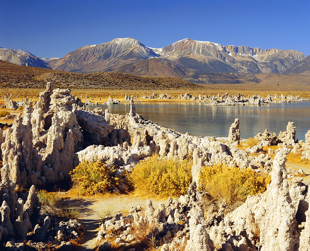Tufas of calcium carbonate, Mono Lake State Reserve, California, USA