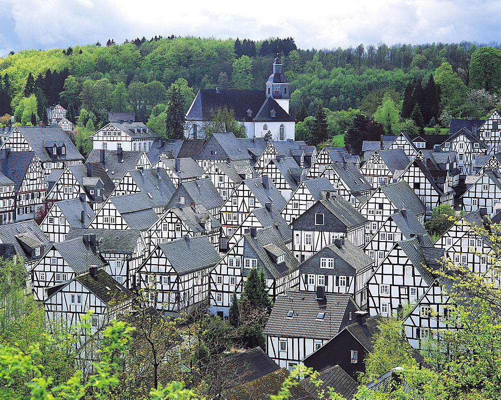Houses in Freudenberg, Westphalia, Germany - 252-5102