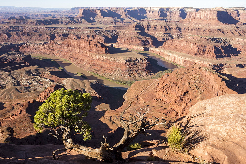 Dead Horse Point State Park, view from point down into Colorado River canyon, Moab, Utah, United States of America, North America - 29-5445