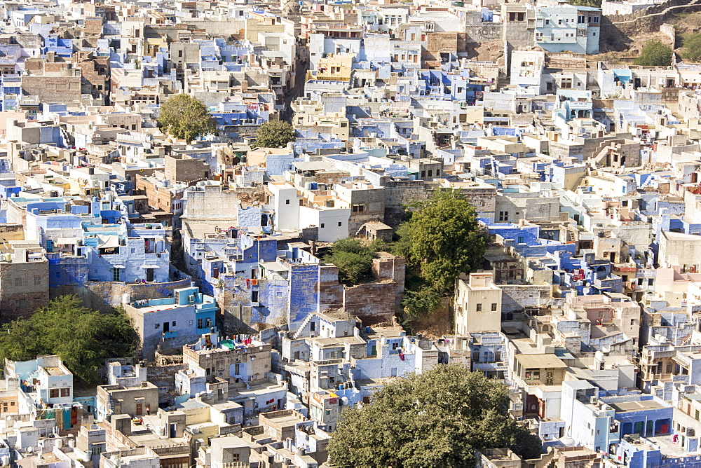 Jodhpur, Blue City (Navchokiya), Rajasthan, India, Asia - 29-5531