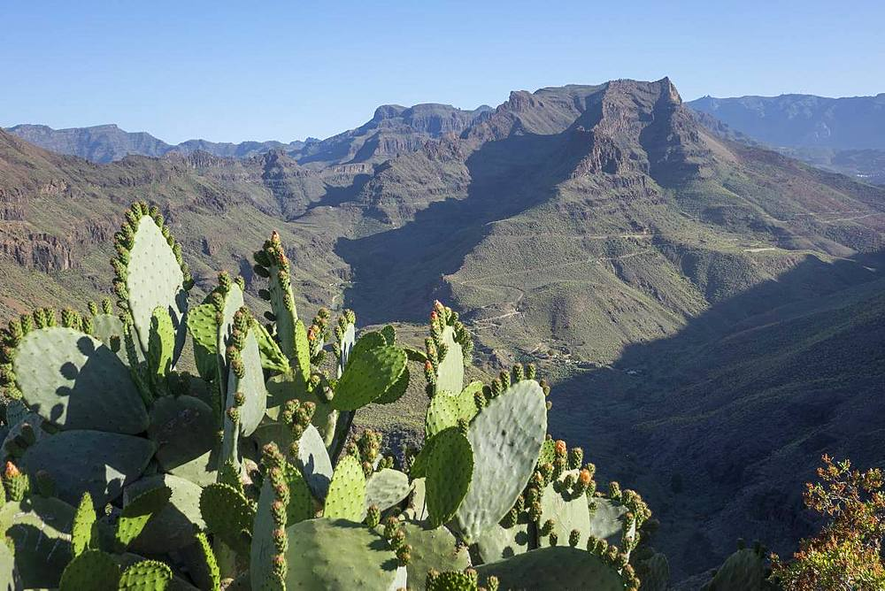Mirador Degollada de las Yeguas, Fataga Valley, Gran Canaria, Canary Islands, Spain, Atlantic, Europe - 306-4458