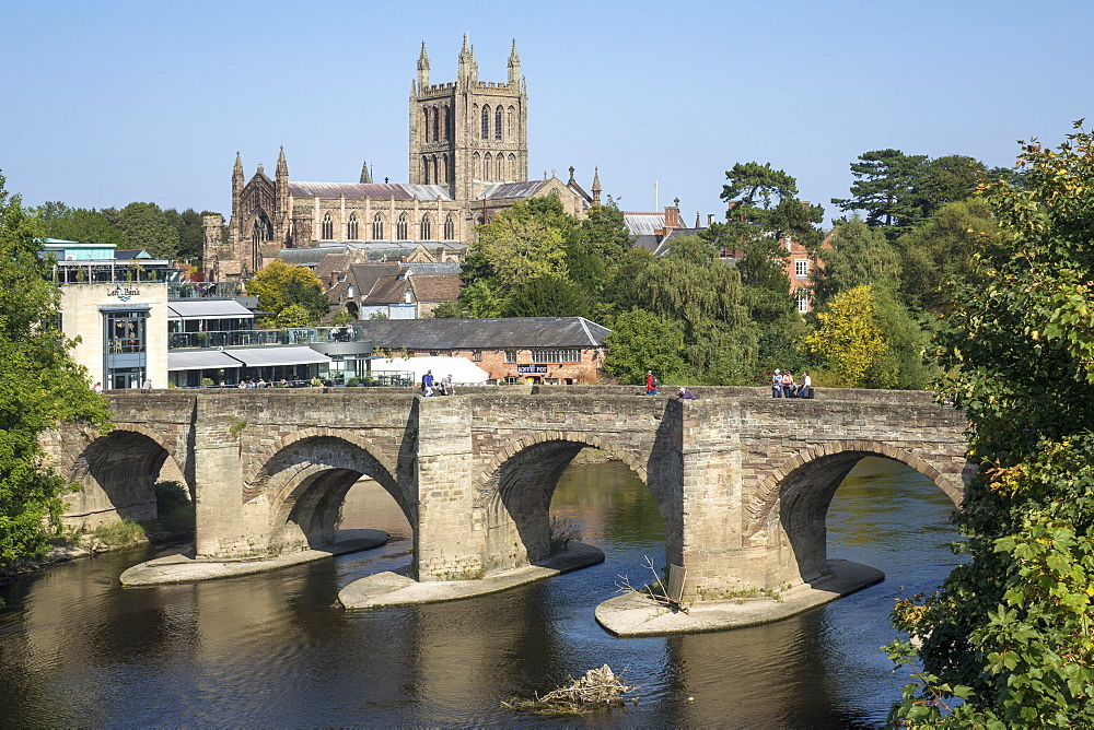 Cathedral, old bridge and River Wye, Hereford, Herefordshire, England, United Kingdom, Europe - 306-4499