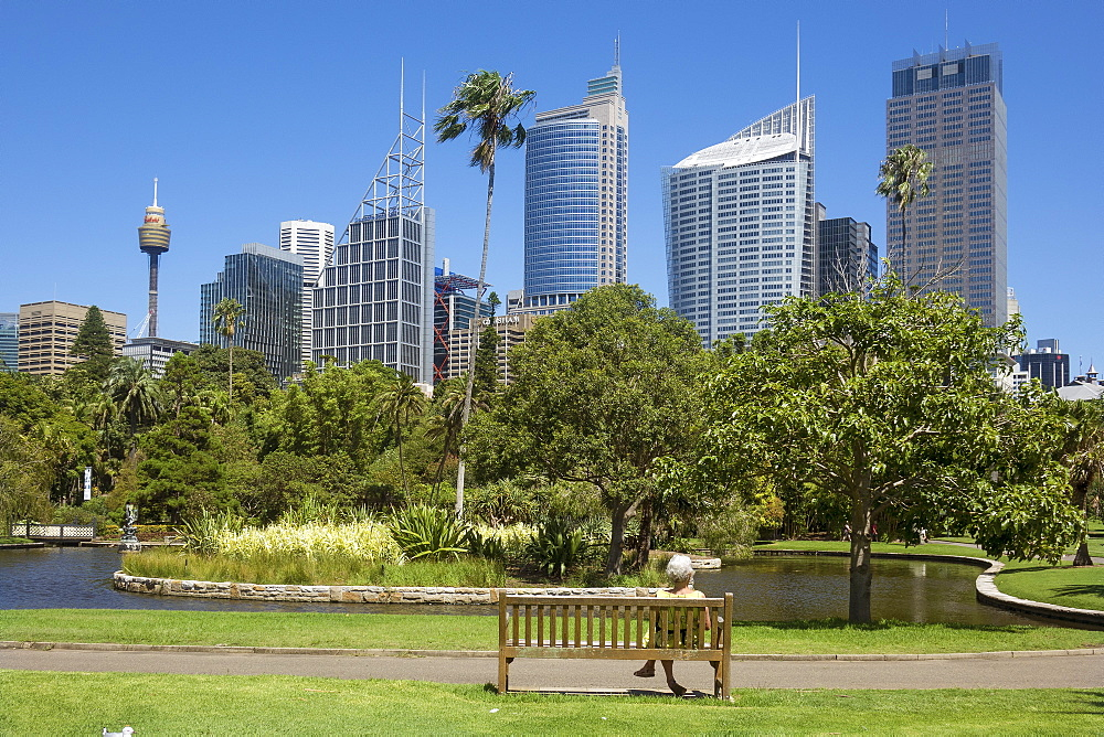 Skyline from Botanical Gardens, Sydney, New South Wales, Australia, Pacific - 306-4502