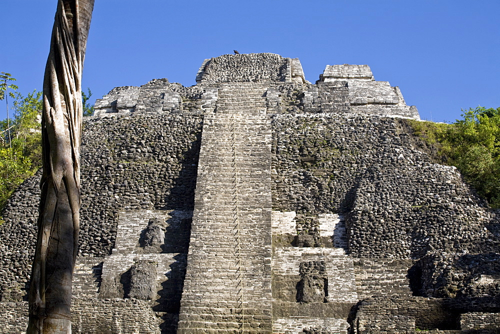 High Temple (Structure N10-43), the highest temple at the Mayan site of Lamanai, Lamanai, Belize, Central America