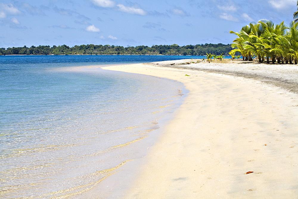 Boca Del Drago Beach, Colon Island (Isla Colon), Bocas del Toro Province, Panama, Central America