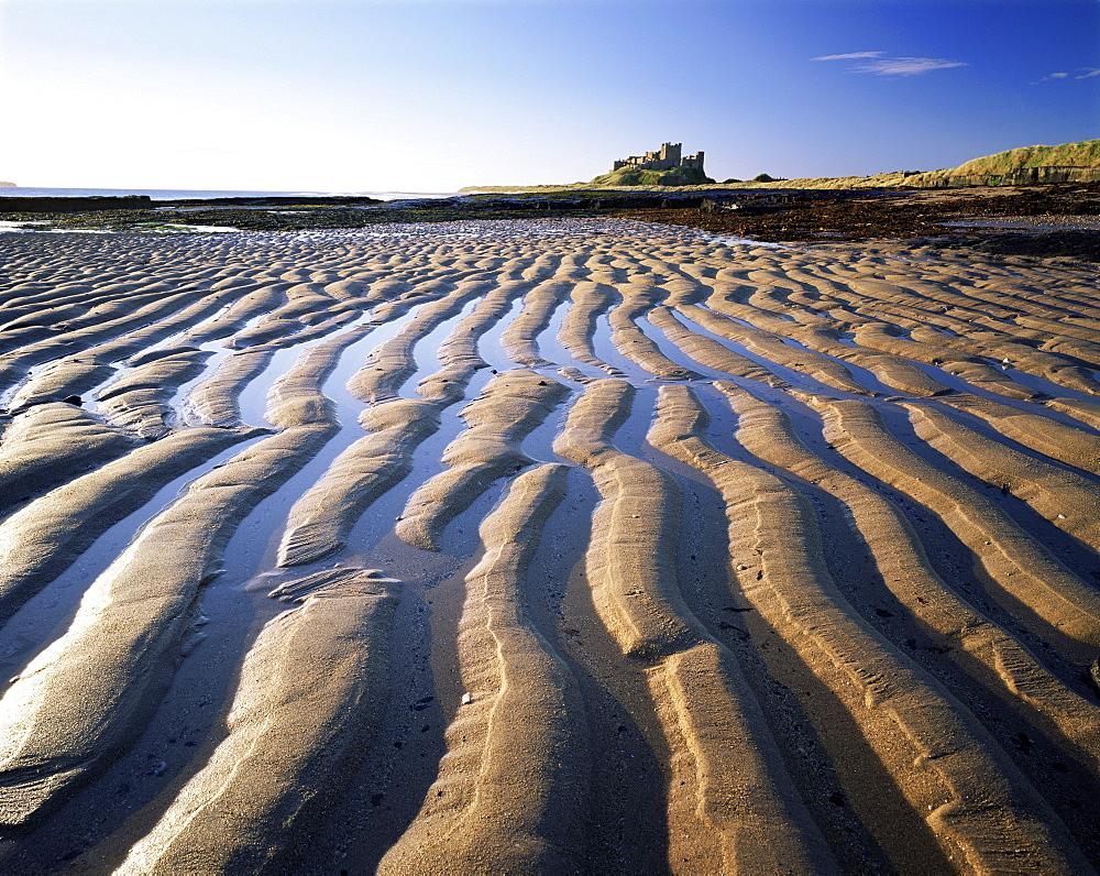 Bamburgh castle and Bamburgh beach, Bamburgh, Northumberland, England, United Kingdom, Europe - 321-3899