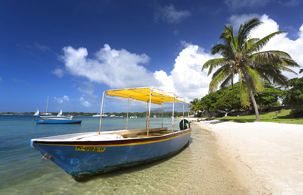 Beach scene with palm trees, blue sky and a boat used to ferry tourists to the idyllic island of Ile Aux Cerfs from Trou D'Eau Douce, a village on the east coast of Mauritius, Indian Ocean, Africa