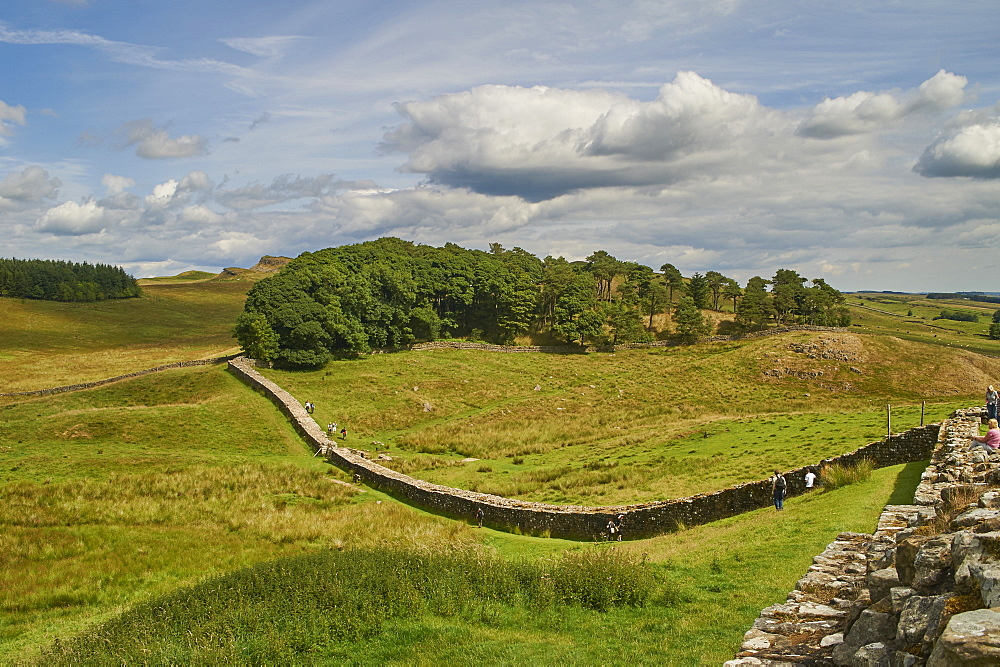 A section of Hadrian's Wall at Housesteads Fort, Bardon Mill, UNESCO World Heritage Site, Northumberland, England, United Kingdom, Europe - 358-625