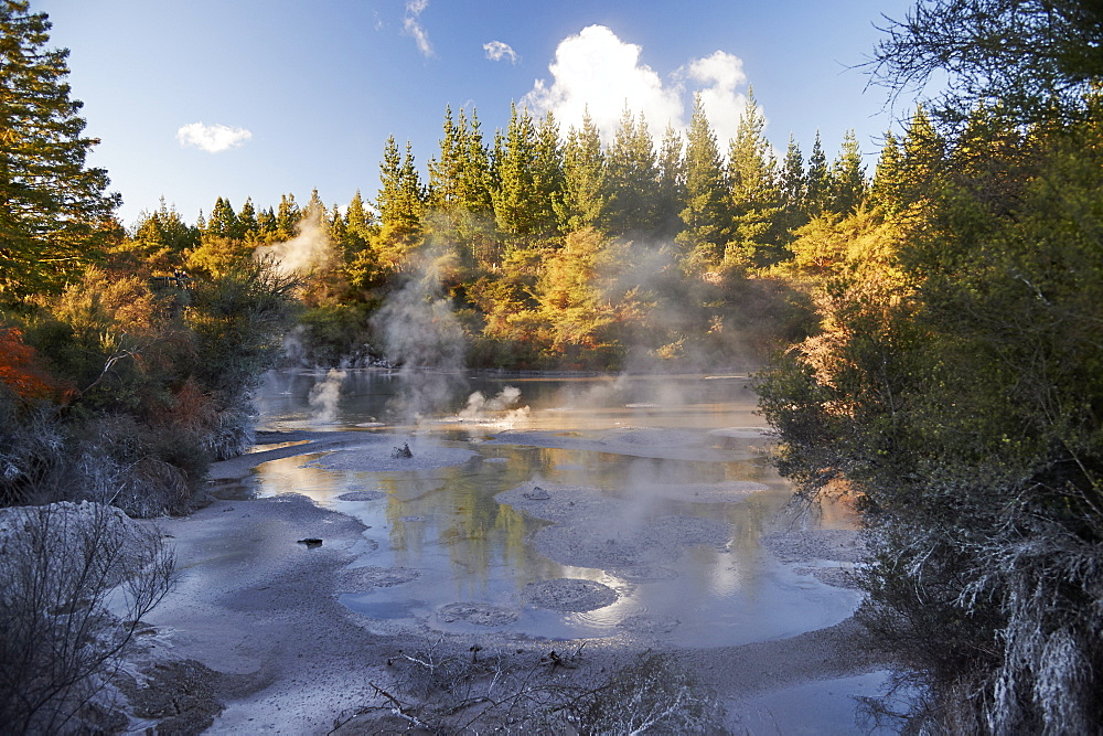 A thermal mud pool bubbles near to Wai-o-tapu Thermal Wonderland, Rotorua, North Island, New Zealand, Pacific