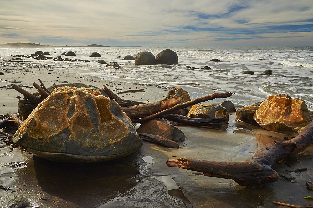 Moeraki Boulders, a group of very large spherical boulders on Koekohe Beach near Moeraki on the coast of Otago, South Island, New Zealand, Pacific - 358-678