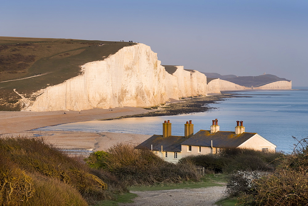 Seven Sisters chalk cliffs, South Downs National Park, East Sussex, England, United Kingdom, Europe - 367-6255