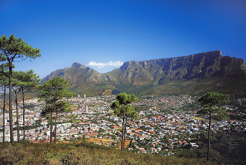 Cape town, South Africa - 373-1099