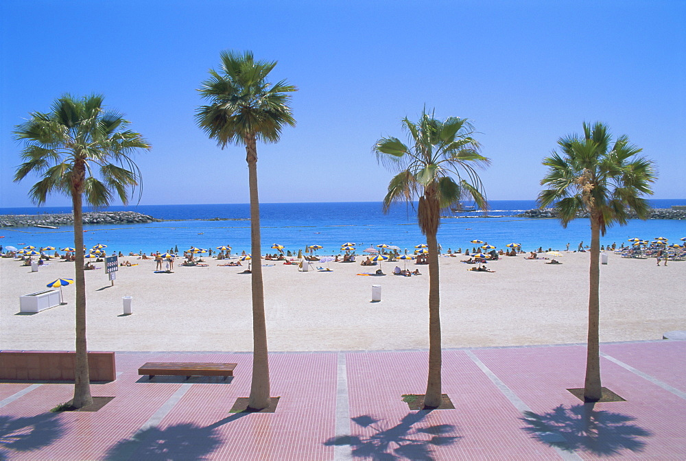Playa de Balito, near Puerto Rico, Gran Canaria, Canary Islands, Atlantic, Spain, Europe - 396-3257