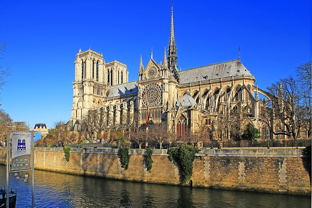 Seine River with Notre Dame Cathedral, Paris, Ile de France, France